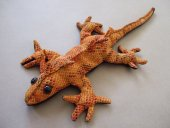 medium lizard sand critter   Please Click the image for more information.
