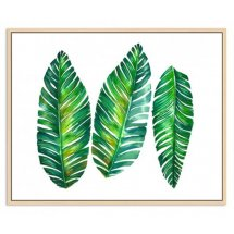 Natural Timber Floating Frame with Trio of Green Fronds Palm Leaves Canvas  Please Click the image for more information.