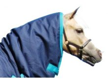 Paddock Hoods Neck Rugs  Please Click the image for more information.