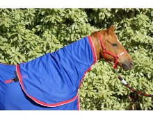 Cotton Neck Rugs Blue/Red  Non FadeColour Stay Machine Washable High Quality Cotton Hood Connector Straps Super Strong Velcro Specifically d. Please Click the image for more information.
